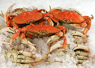 Fresh Whole Cooked Dungeness Crab