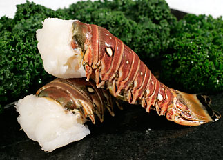 Caribbean Lobster Tail (12-14 oz) - Buy Online - Seattle Fish Company