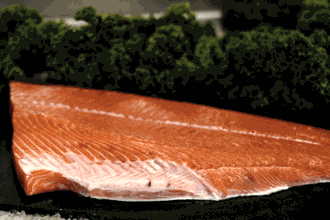 Seattle Fish Company - Buy Fresh Fish Online - Overnight Delivery